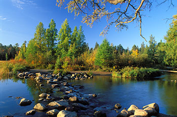 The Showdown for Itasca State Park