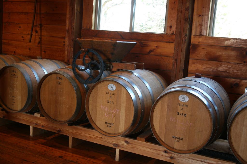 Minnesota Wine Vineyards Grow in Popularity