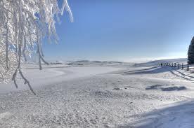 Quick Queue: Soundscope / Winter Heat