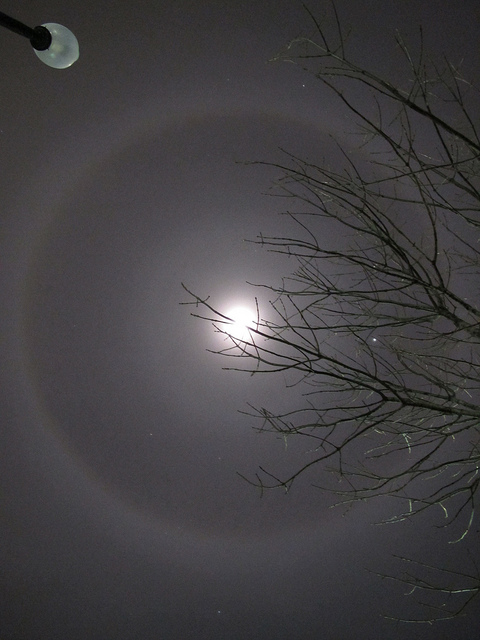 Icey truth about rings around the moon