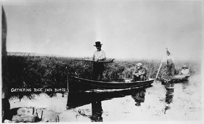 Ojibwe elder Billy Blackwell tells the story of wild rice