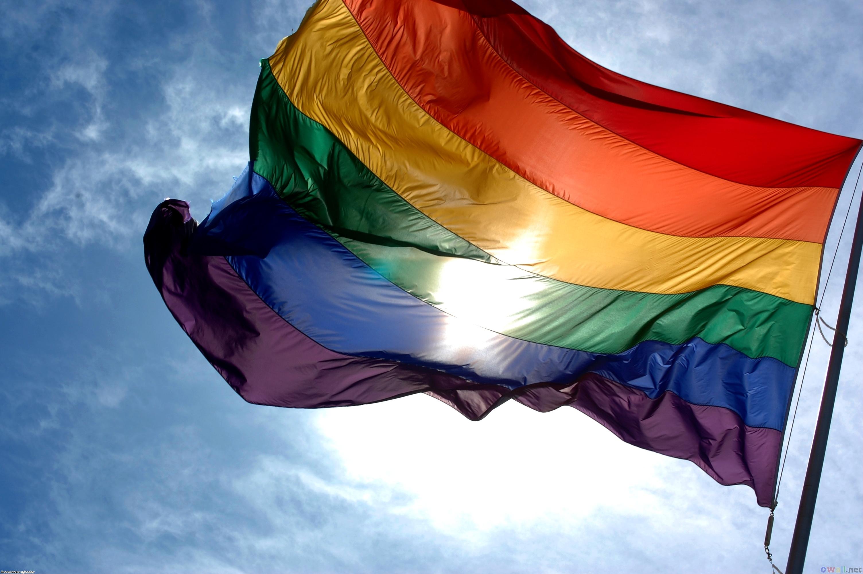 """Culture Queue 8-04-13: """"Totally Gay"""""""