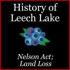 1889 Nelson Act at Cass Lake Reservation and the 1st Three Council Meetings