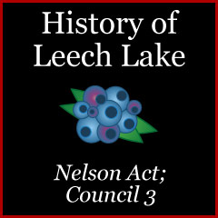 Purpose of the 1889 Nelson Act
