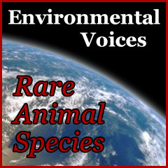 Rare Animal Species