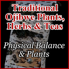 Physical Balance and Plants
