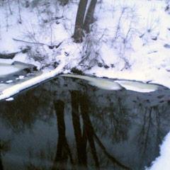 Detox During Winter