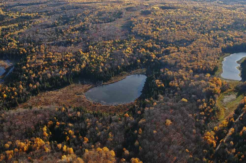 Environmental Research Collaboration with the University of Minnesota