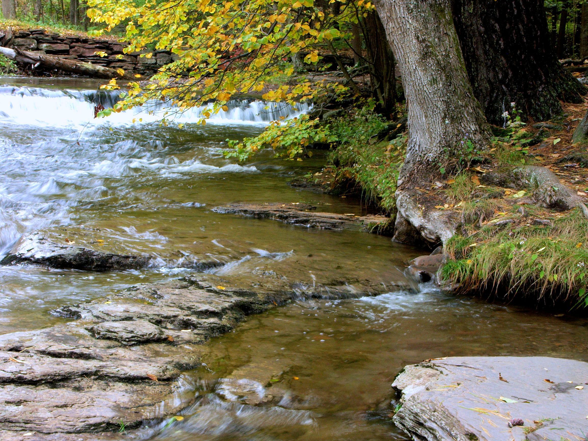 Amity Creek Chalet