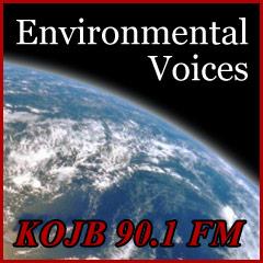 10 Environmental Issues