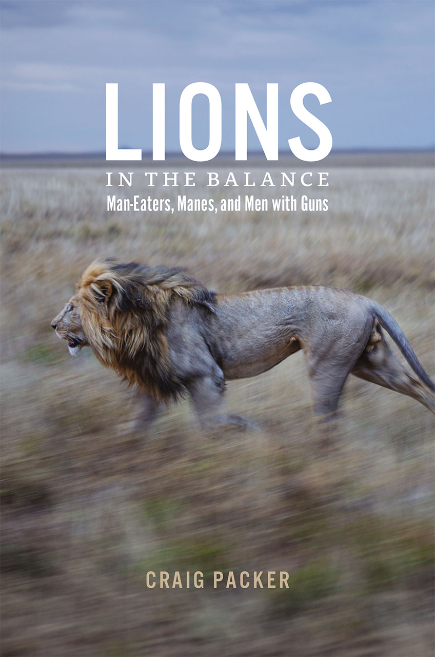 """"""" Lions in the Balance: Man-Eaters, Manes, and Men with Guns"""" by Dr. Craig Packer"""