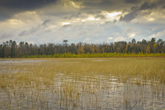 Minnesota Native News: At Last, White Earth Lands State Grant for Conservation Project