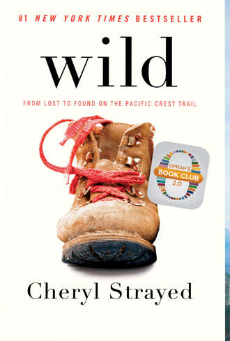 MN90: From Minnesota to Wild on the Pacific Crest Trail