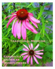 Generalization of Herbs
