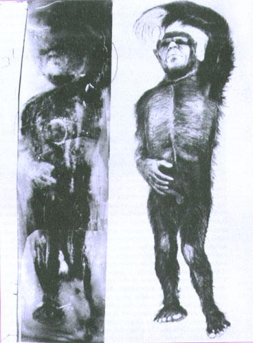 MN90: Frank Hansen & the Minnesota Iceman