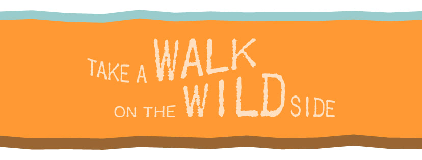 Take a Walk on the Wild Side 2017