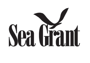 Minnesota Sea Grant developing green infrastructure guide for North Shore of Lake Superior
