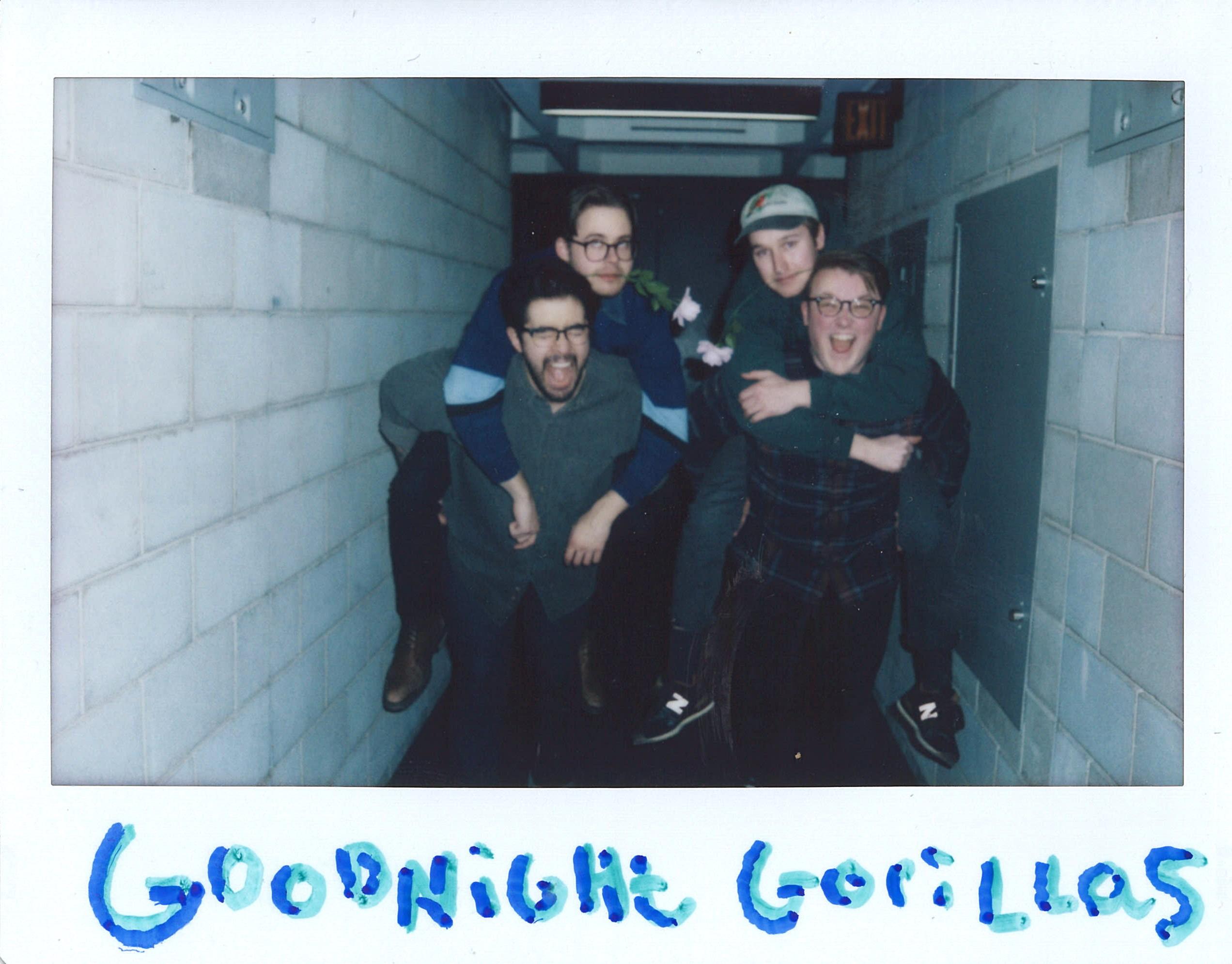 Goodnight Gorillas