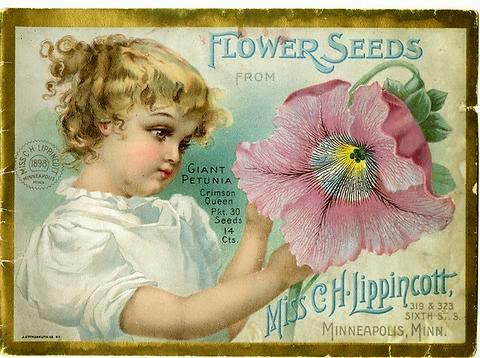 MN90: The Pioneer Seedswoman