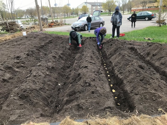 The Untold Story of Food Security and the SCSU Community Garden with Tracy Ore