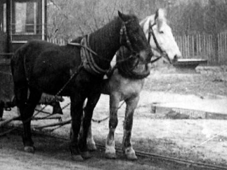 MN90: Horsecars