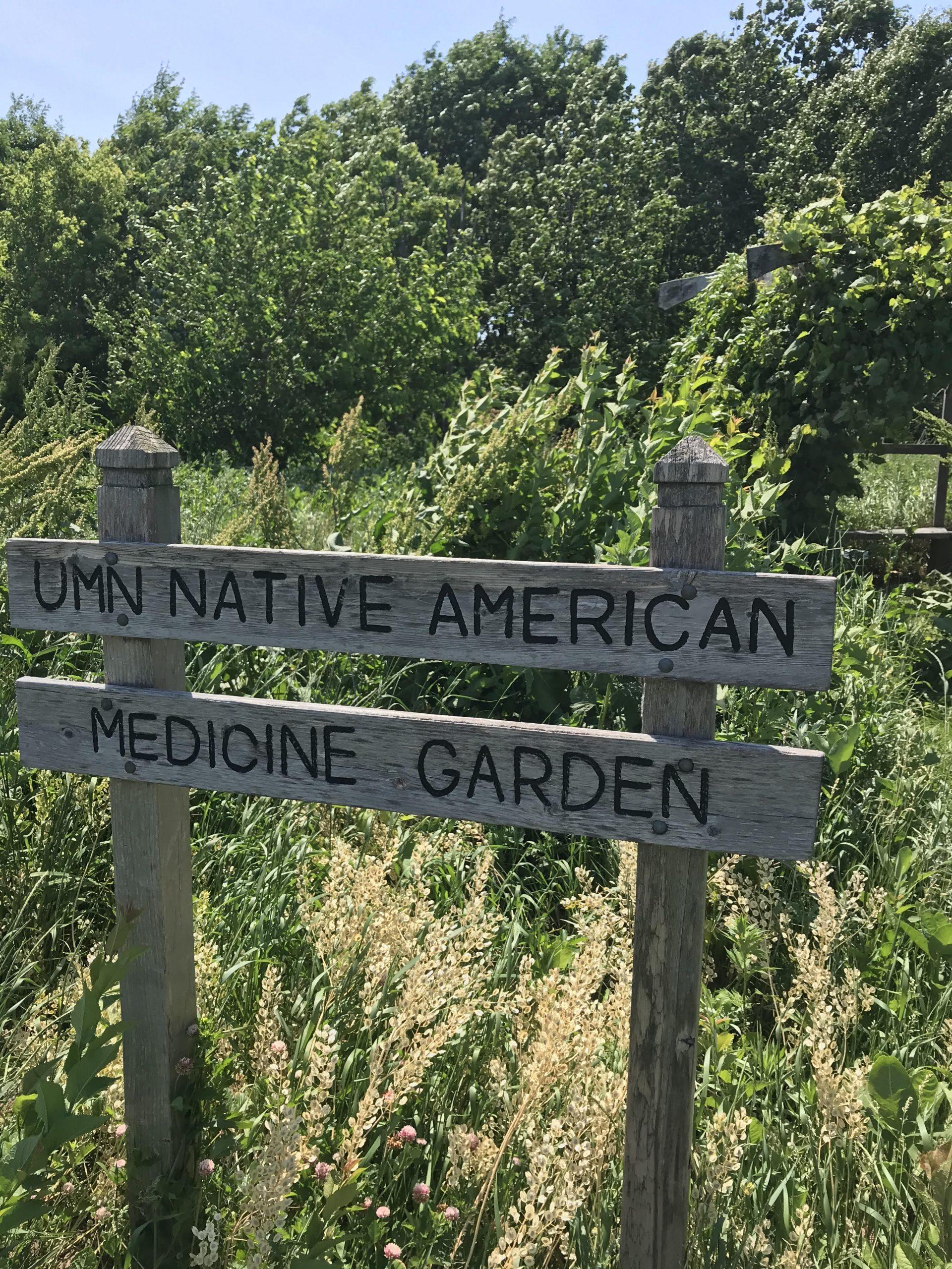 MN Native News: Who's Tending the Garden?