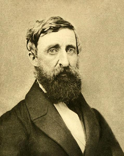 Thoreau Takes the Minnesota Airs